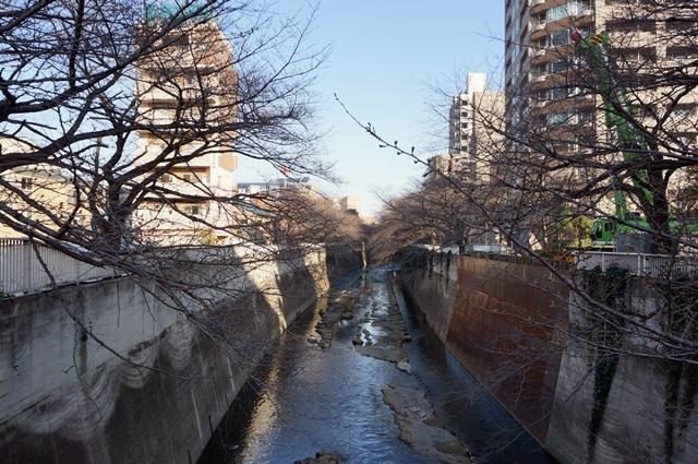 「環状四号線」 神田川