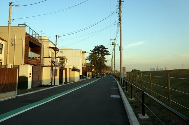 二子玉川公園側の河川敷 2014.11.22