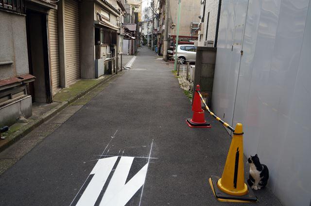 大井町の猫 2014.12