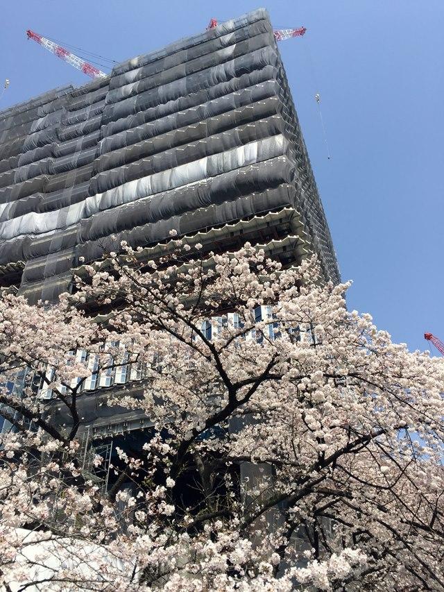 「東京ガーデンテラス」 2015.3.30